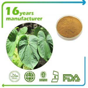 Kava Extract Kavalactones 30% HPLC
