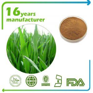 Wheat Grass Extract 10:1 TLC
