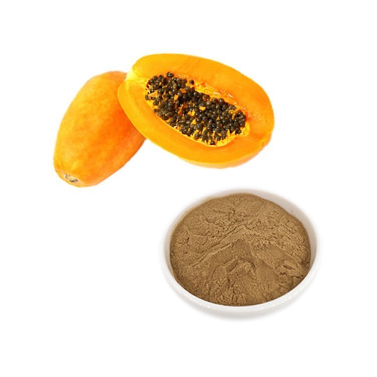 Papaya Extract 10:1 TLC