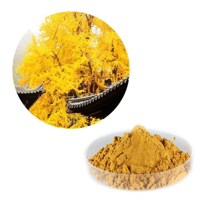 Ginkgo Biloba Extract 24% Flavonoids Glycosides, 6% Terpene Lactones HPLC