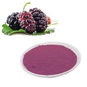 Mulberry Fruit Extract 10:1 TLC
