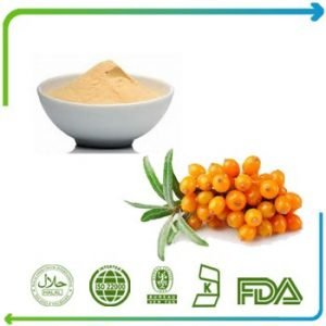 Sea Buckthorn Berry Oil TLC