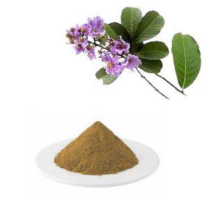 Banaba Leaf Extract Corosolic Acid 1% HPLC