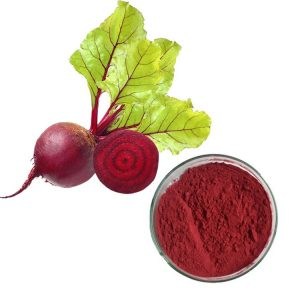 Red Beet Root Extract 10:1 TLC