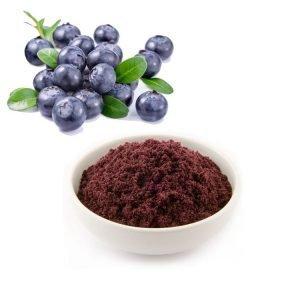 Bilberry Juice Powder TLC