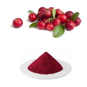 Cranberry Juice Powder TLC
