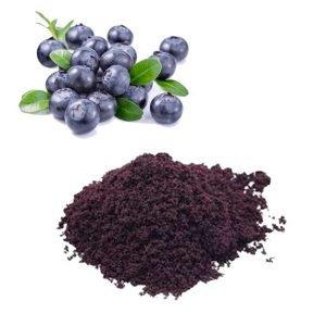 Blueberry Juice Powder TLC