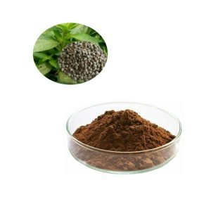 Chasteberry powder extract Vitexin 5%  HPLC