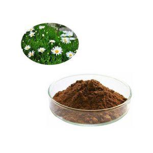 Chrysanthemum Extract Flavonol 5% HPLC
