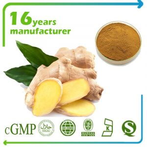 Ginger Root Extract 10:1 TLC