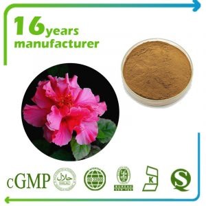 Cottonrose Hibiscus Extract 10:1 TLC
