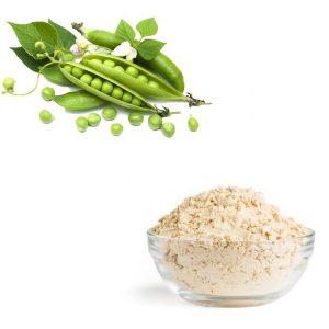Pea Protein Powder Protein 80% HPLC