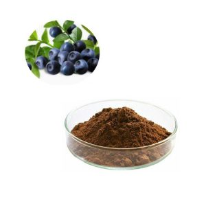 Chinese Bilberry Extract Anthocyanidins 25% UV (Chinese Test Method)