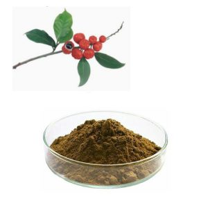 Guarana Seed Extract 10:1 TLC