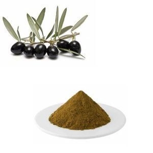 Olive Leaf Extract 10:1 TLC