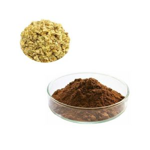 Chrysanthemum Extract 10:1 TLC
