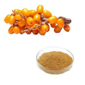 Sea Buckthorn Berry Juice Powder TLC
