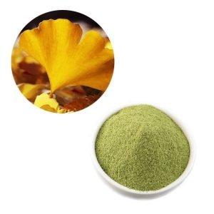 Ginkgo Biloba Leaf Straight Powder TLC