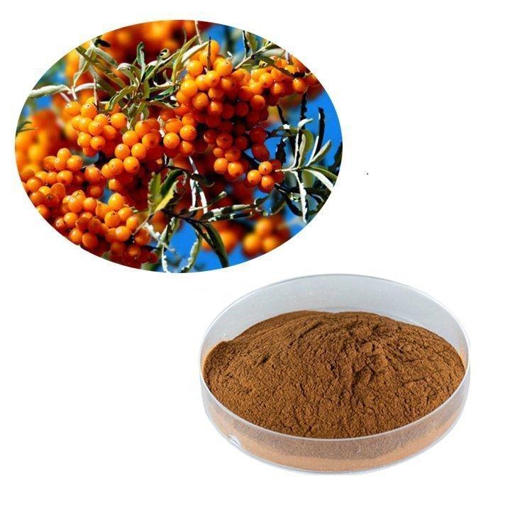 Sea Buckthorn Extract 10:1 TLC