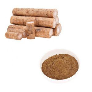 Burdock Root Extract 10:1 TLC