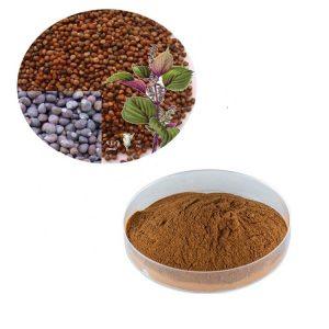 Perilla Seed Extract 10:1 TLC