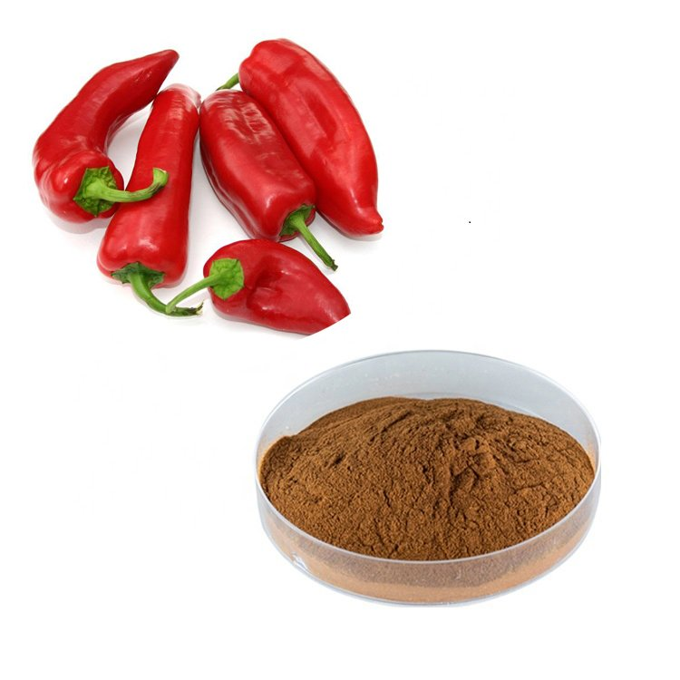Chili Pepper Extract 10:1 TLC