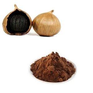 Black Garlic Extract 10:1 TLC