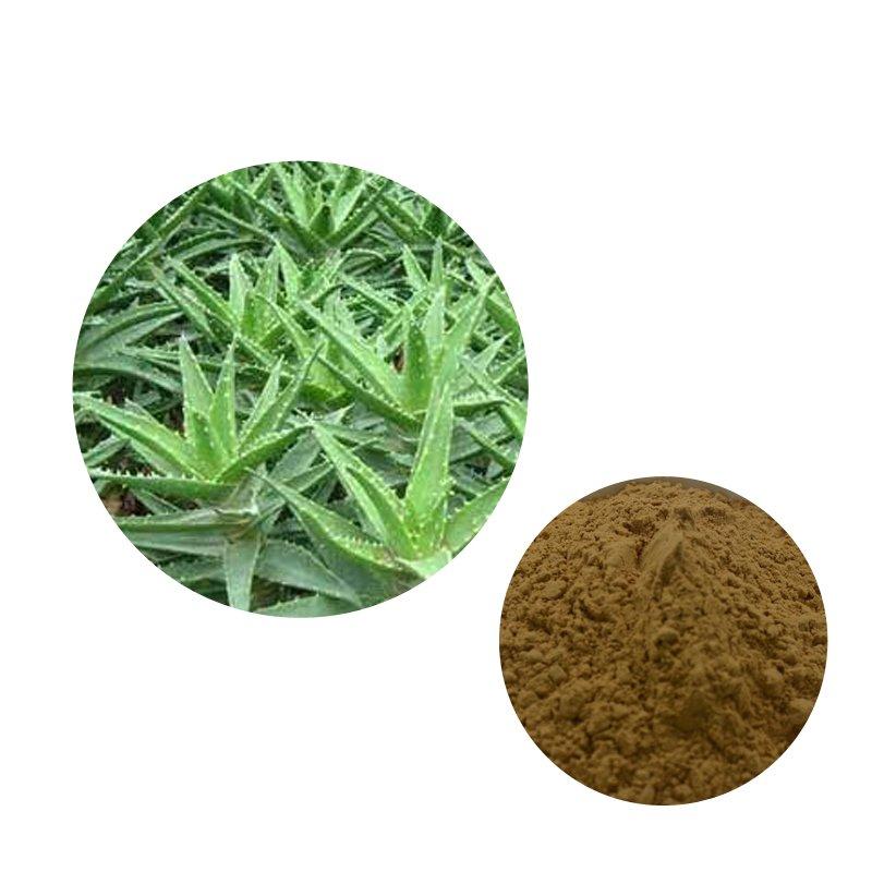 Aloe Vera Extract 10:1 TLC