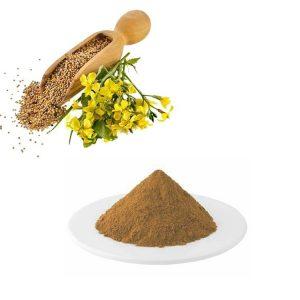 Mustard Seed Extract 10:1 TLC