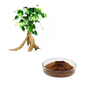 Pueraria Extract Water Soluble Puerarin 30% HPLC