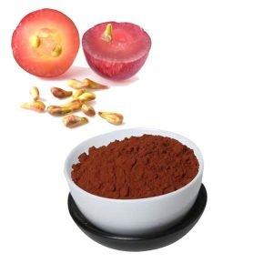 Grape Skin Extract Polyphenol 40% UV