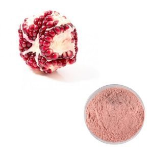 Pomegranate Juice Powder Organic TLC