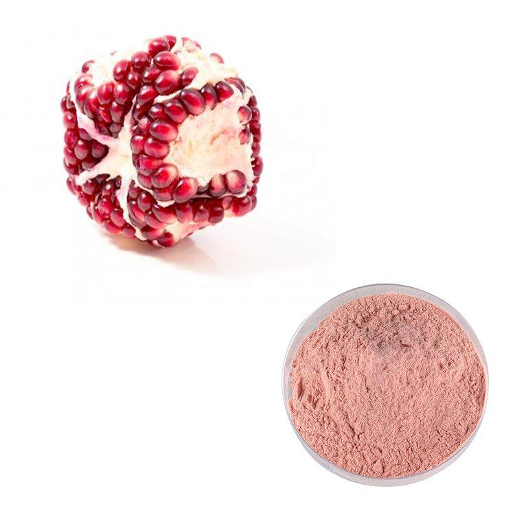 Pomegranate Juice Powder Organic TLC