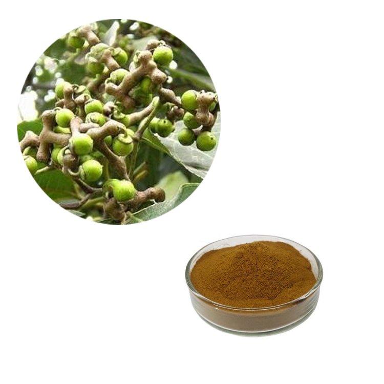 Semen Hoveniae Extract 10:1 TLC