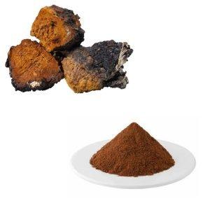 Chaga Mushroom Extract 10:1 TLC