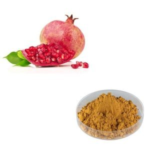 Pomegranate Peel Extract 40% Ellagic Acid HPLC