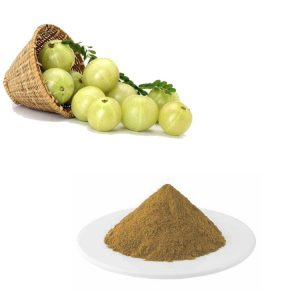 Amla Extract 10:1TLC
