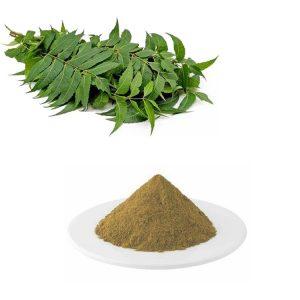 Neem Leaves Straight Powder TLC