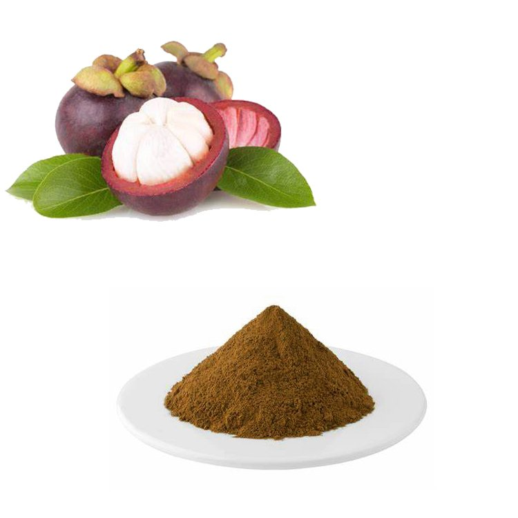 Mangosteen Extract 10:1 TLC
