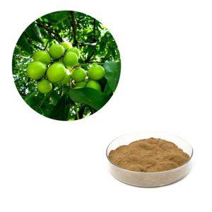 Soapnut Extract Saponin 70% HPLC