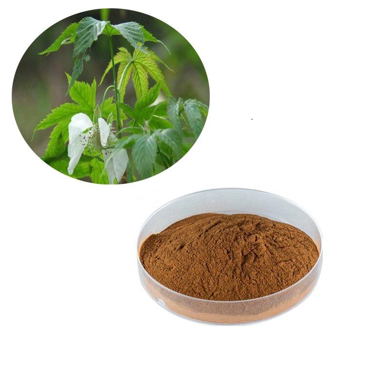 Sweet Tea Extract Rubusoside 80% HPLC