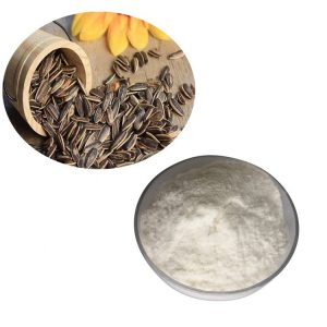 Sunflower Seed Oil Powder GC