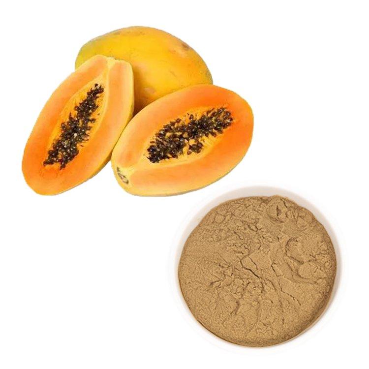 Carica Papaya Juice Powder TLC