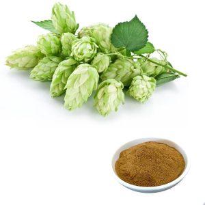 Hops Extract Xanthohumol 5% HPLC