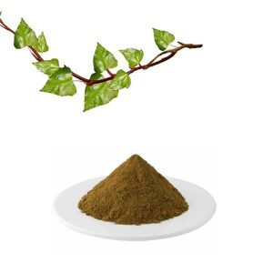 Ivy Leaf Extract 10:1 TLC