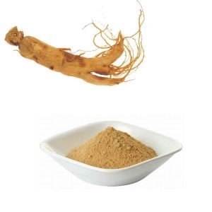 American Ginseng Extract Total Ginsenosides 3% HPLC