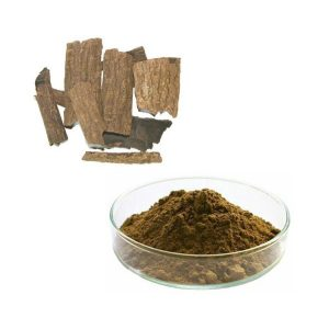 Eucommia Ulmoides Leaf Extract Chlorogenic Acid 30% HPLC