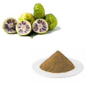Noni Fruit Extract 10:1 TLC