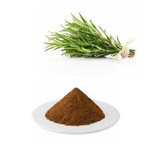 Rosemary Extract Ursolic acid 50% HPLC