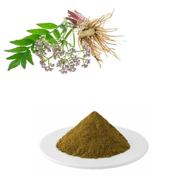 Valerian Root Extract Valeric Acid 0.8% HPLC